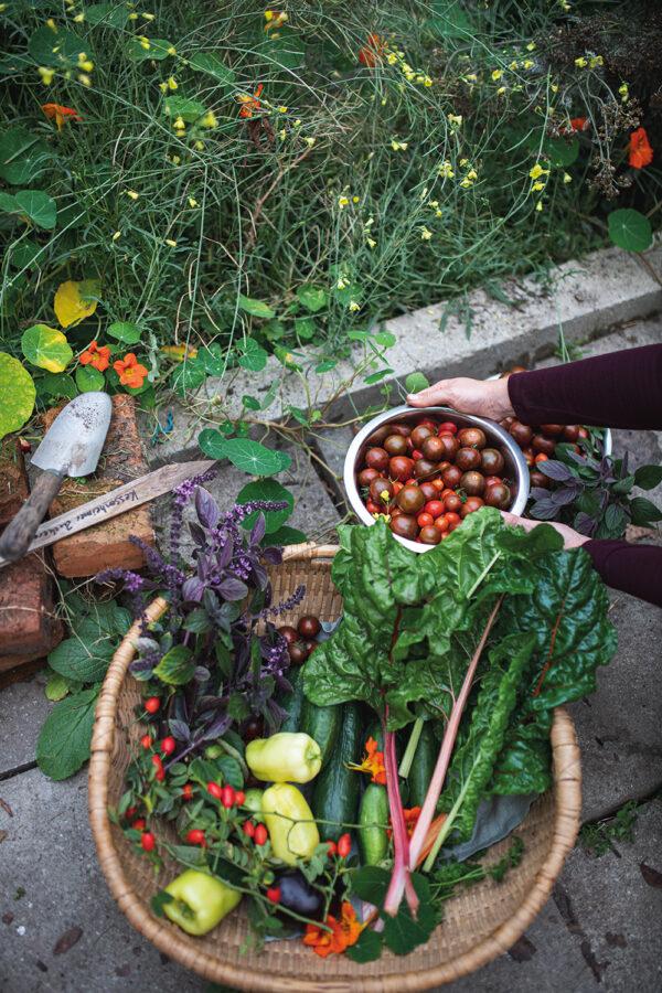 himmeblau-Blog-Farmmade-Gemüse