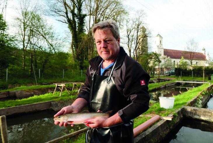 himmeblau-Blog-Fischzucht-Westenkirchner